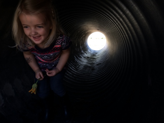 2014-10-04 Flo in tunnel