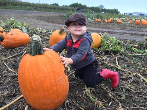pumpkin deuce1