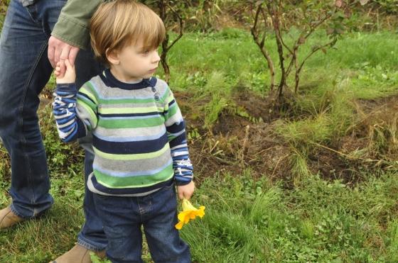 pumpkin duece flower hand holding
