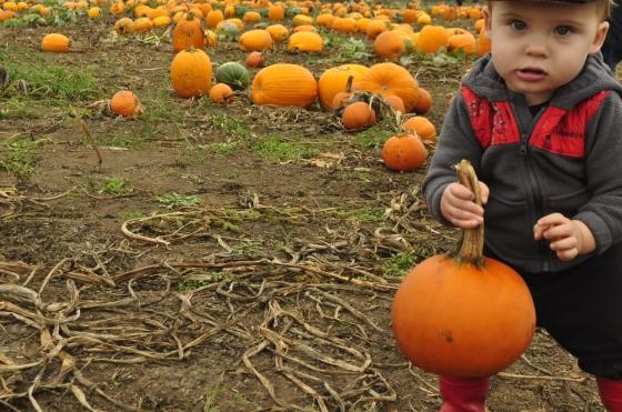 pumpkin duece11