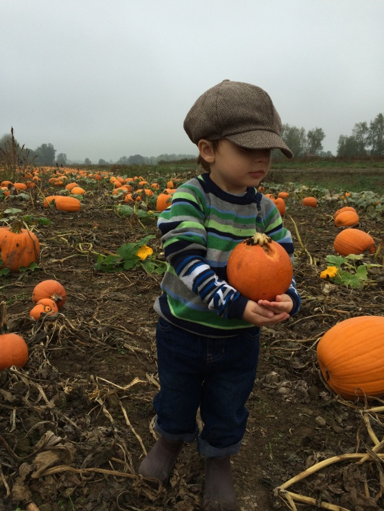 pumpkin duece3