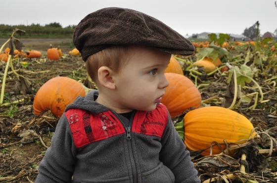 pumpkin duece6