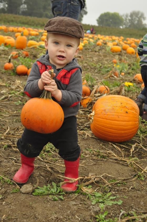 pumpkin duece9
